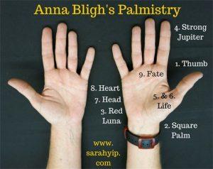 Anna Bligh Palmistry
