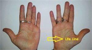 PalmistryLifeLine